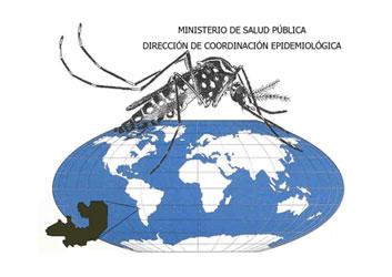 Dengue. Ministerio Salud Pública